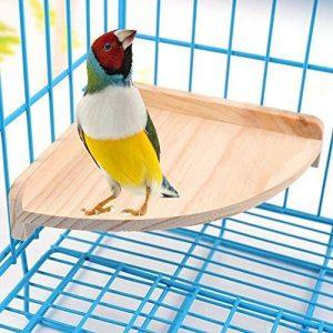 perchoir pour oiseaux en bois TOP 4 image 0 produit