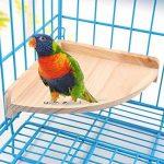 perchoir pour oiseaux en bois TOP 4 image 1 produit