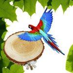 perchoir pour oiseaux en bois TOP 5 image 2 produit