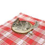 perchoir pour oiseaux en bois TOP 5 image 3 produit