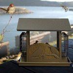 Pet Online Mangeoire d'oiseaux de cabine en métal imperméable à l'eau automatique extérieure de parc d'oiseau de la marque Pet Online image 4 produit