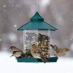 Plus Des Oiseaux Chargeur De Colibri Pendaison Belvédère Sauvage Mangeoire Pour Les Oiseaux Parfait Pour Le Jardin Décoration Et Oiseau Regarder Pour Bird Lover (Vert). Cacoffay de la marque Caco.Ffay image 1 produit