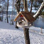 prix mangeoire oiseaux TOP 8 image 1 produit