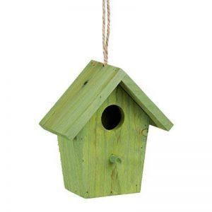 Relaxdays Maison à oiseaux nichoir perchoir en bois coloré à suspendre HxlxP: 16 x 15 x 11 cm, vert de la marque Relaxdays image 0 produit