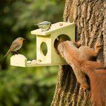 Relaxdays Mangeoire pour écureuil distributeur de nourriture animaux en bois à suspendre HxlxP: 17,5 x 12 x 25 cm, vert de la marque Relaxdays image 1 produit