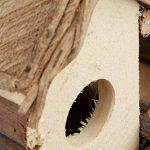 Relaxdays Nichoir à oiseaux décoration maison à oiseaux en bois à suspendre villa fait main, nature de la marque Relaxdays image 3 produit