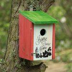 Relaxdays Nichoir à oiseaux HOME SWEET HOME pour petits oiseaux bois porte HxlxP 21,5 x 12 x 15,2 cm à suspendre, vert rouge de la marque Relaxdays image 1 produit