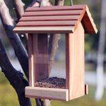 Sauvage Bird Colibri Protection Feeder En Bois Maison Des Oiseaux Extérieur Observation Des Oiseaux Villa Horticole Jardin Bird Automatique Feeder. Cacoffay de la marque Caco.Ffay image 2 produit