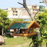 Sauvage Oiseau Feeder En Bois Maison Des Oiseaux De Plein Air Observation Des Oiseaux Villa Horticole Jardin Oiseau Automatique Feeder. Cacoffay de la marque Caco.Ffay image 1 produit