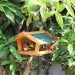 Sauvage Oiseau Feeder En Bois Maison Des Oiseaux De Plein Air Observation Des Oiseaux Villa Horticole Jardin Oiseau Automatique Feeder. Cacoffay de la marque Caco.Ffay image 4 produit