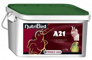 station de nourrissage oiseaux TOP 1 image 0 produit
