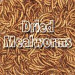 Supa Mealworms séchées 3ltr de la marque Supa image 1 produit