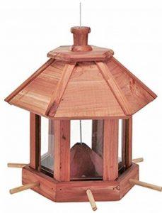 Trend de nourriture pour oiseaux Cèdre Bois Oiseaux Maison Oiseaux Cat 6rectangulaire de la marque Trendkontor image 0 produit