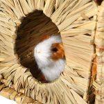 UEETEK Naturel fait à la main Herbe Hut Lit Maison Paille Herbe Oiseau Cubby Nid Cage Pour Lapin Lapin Hamster Gerbille Chinchillas de la marque UEETEK image 1 produit