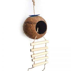 UEETEK Nid d'oiseau nid de noix de coco nid naturel coco avec échelle oiseau jouet pour perruches Perruche ondulée et petit animal de compagnie de la marque UEETEK image 0 produit
