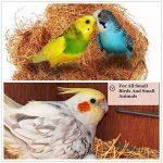 UEETEK Nid d'oiseaux Nest de noix de coco Ensemble de cage d'oiseaux confortable pour perruches Budgerigar et petit animal domestique de la marque UEETEK image 3 produit