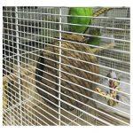 UEETEK Nid d'oiseaux Nid de coquille de noix de coco pour perruches Budgerigar et petit animal domestique de la marque UEETEK image 3 produit
