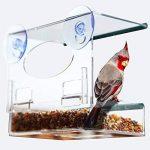 UKCOCO Mangeoire pour oiseaux avec ventouses Mangeoire amovible pour oiseaux avec trous de vidange de la marque UKCOCO image 3 produit
