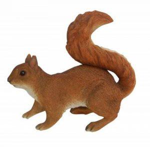 un ecureuil TOP 5 image 0 produit