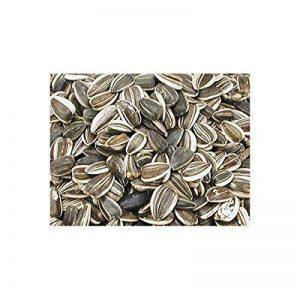 Vadigran Grandes graines de tournesol striées 10 Kg de la marque VADIGRAN image 0 produit