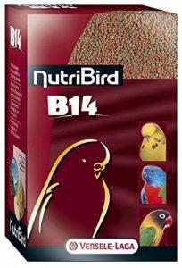 VERSELE LAGA Nutribird B14 Aliment d'Entretien pour Oiseau 4 kg de la marque VERSELE LAGA image 0 produit