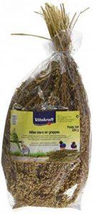 Vitakraft Millet en Grappe pour Oiseau Blanc 500 g de la marque Vitakraft image 0 produit