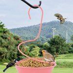 wandlee simple à suspendre Humming canari Parrot Pigeon Sauvage Mangeoire pour oiseaux de la marque WandLee image 4 produit