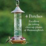 WOODLINK - Bird Feeder, Hummingbird, Embossed Glass, 14-oz. de la marque Woodlink image 3 produit
