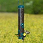Woodstream 3261 Mangeoire à Oiseaux et Pinsons Finch Feeder™ de Perky-Pet® de la marque Opus image 2 produit