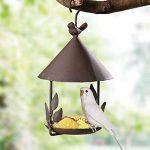 Yuccer Mangeoires Oiseaux du Jardin, Grand Bains pour Oiseaux Sauvages Très Résistante Parfaite pour la Décoration de Cour de la marque Yuccer image 2 produit
