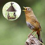 Yuccer Mangeoires Oiseaux du Jardin, Grand Bains pour Oiseaux Sauvages Très Résistante Parfaite pour la Décoration de Cour de la marque Yuccer image 3 produit