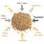 Zolux Mélange de graines pour oiseaux de la nature sac de 2 kg de la marque Zolux image 2 produit